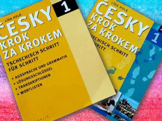 Tschechisch lernen in Chemnitz